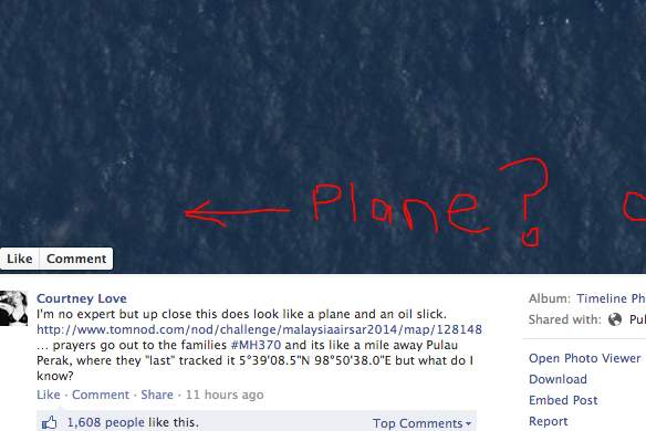 Don't Worry About The Missing Malaysian Plane, Courtney Love Already FoundIt
