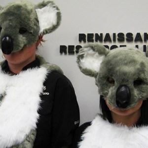 10 Reasons Koalas Are Better At Life Than Humans