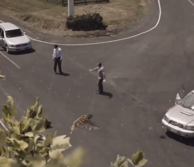 This Anti-Speeding PSA From New Zealand Will Make Your Heart Drop