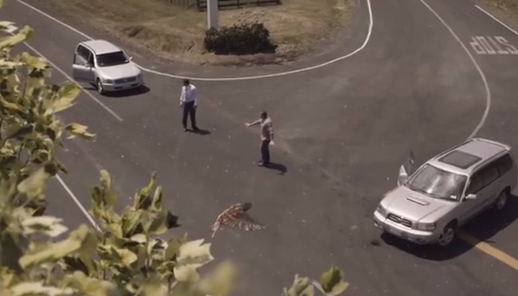 This Anti-Speeding PSA From New Zealand Will Make Your HeartDrop
