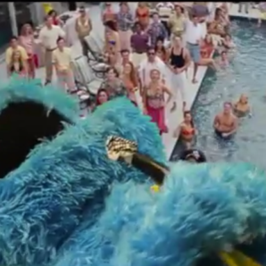 Cookie Monster Deserves An Oscar For The Hilarious 'Wolf Of Sesame Street'