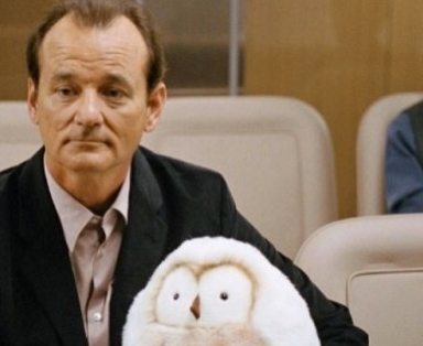 What Would Bill Murray Do?