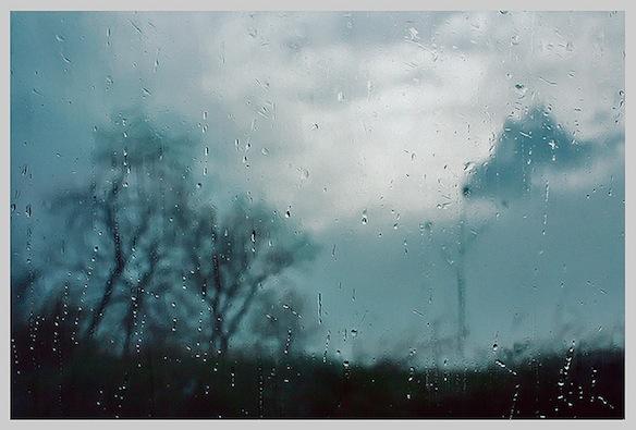 seyed mostafa zamani / flickr.com