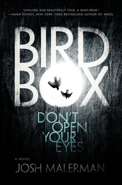 Bird Box cover
