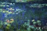 early february 1973 monet water-lilies