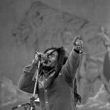 Hallucinating Bob Marley: An Excerpt