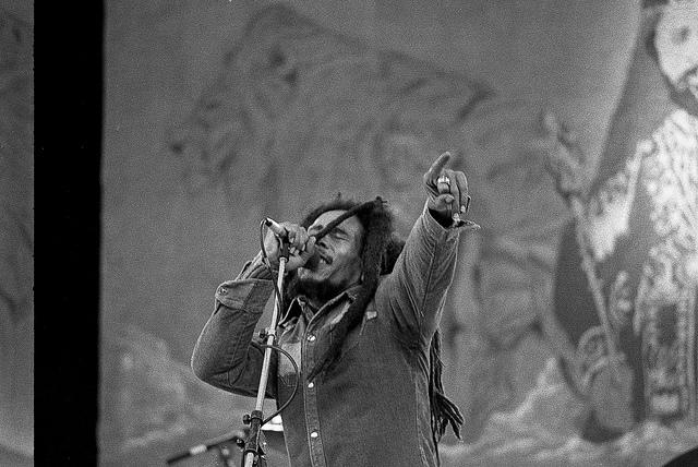 Hallucinating Bob Marley: AnExcerpt