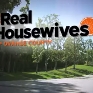 14 Things The Real Housewives Series Have Taught Me