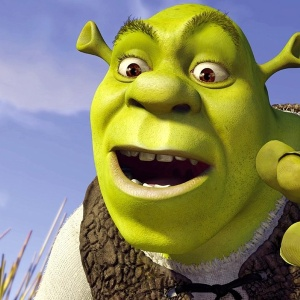 13 Shrek Gifs That Totally Show The Difference Between Being 20 and 25