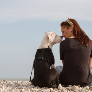 5 Worst Types Of Dog Owners