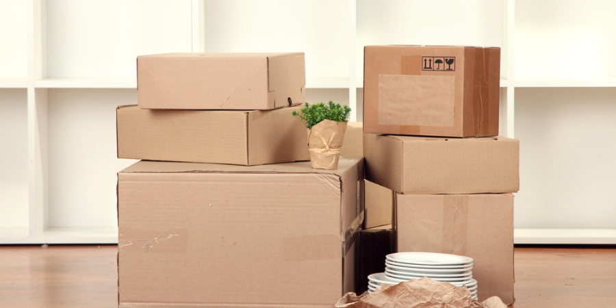 5 Ways To Survive The Torture That Is Moving (Let Alone Finding An Apartment)