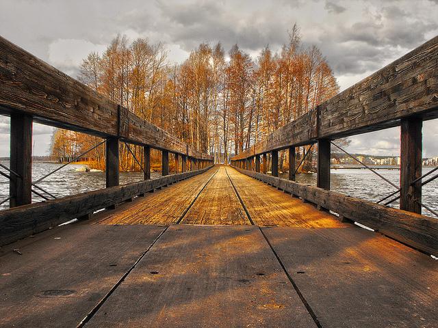 image - Flickr / Miguel Virkkunen Carvalho