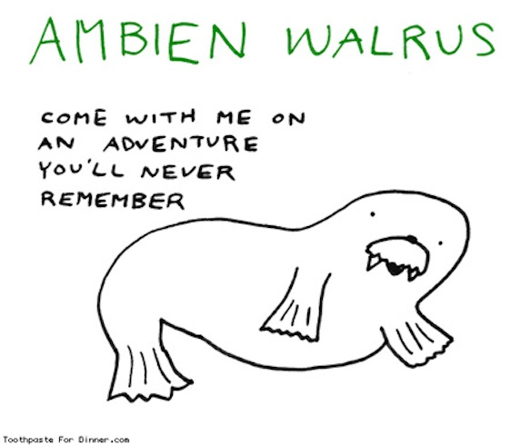Ambien walrus is good at making large amounts of money disappear from your bank account and surprising you with non-FDA approved herbal supplements in the mail!