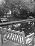 early march 1973 march 8 bench at lily pond
