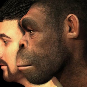 7 Reasons Why The Theory Of Evolution Is Like Literally And Totally Wrong