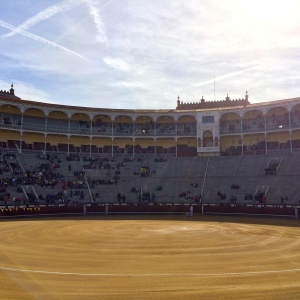 I Watched 6 Bulls Get Slaughtered At A Spanish Bullfight