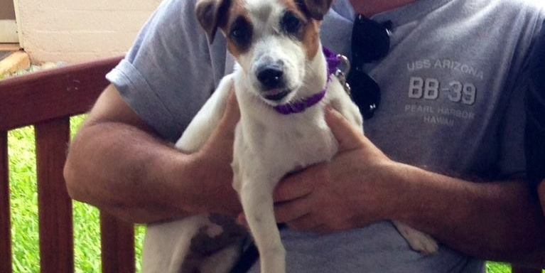 """Cute Shelter Dog Placed On Craigslist """"For Sale"""" Section Hours After It WasAdopted"""