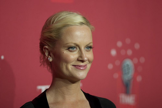 Pure, Unadulterated, Hardcore Advice From The Funniest Woman In America, AmyPoehler