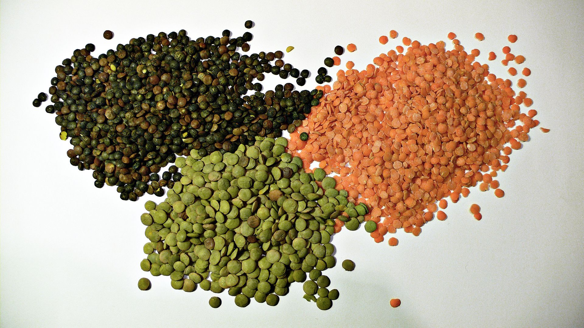 """Source: 3 types of lentil"""". Licensed under CC BY-SA 2.0 via Wikimedia Commons."""