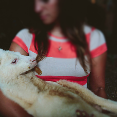 This Hipster Couple Owns A Baby Kangaroo Because Why Not?