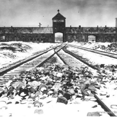 6 Unexpected Things I Learned While In Auschwitz