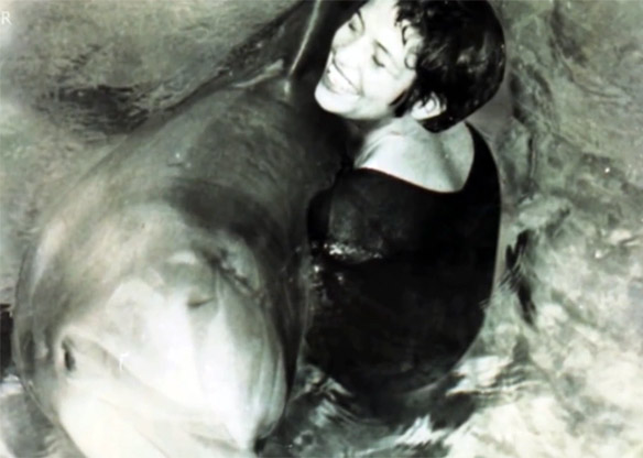 Peter the dolphin and the trainer he fell in love with, Margaret Howe. BBC