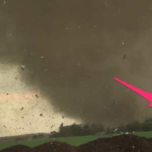 You Can Witness The Sheer Power Of Tornadoes Through This Terrifying Video