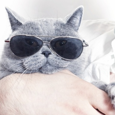10 Secrets To Being Cool