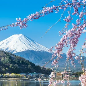 15 Things You Should Absolutely Avoid Doing When You Visit Japan