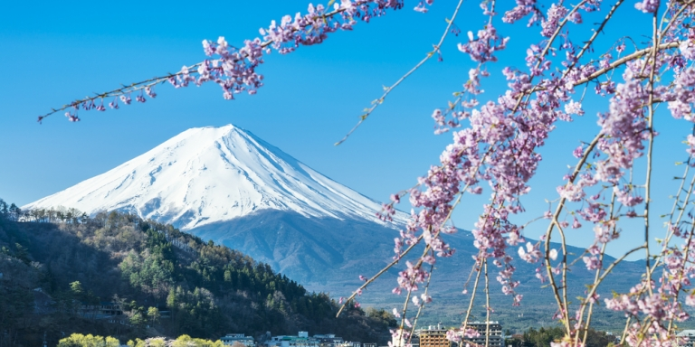 15 Things You Should Absolutely Avoid Doing When You VisitJapan