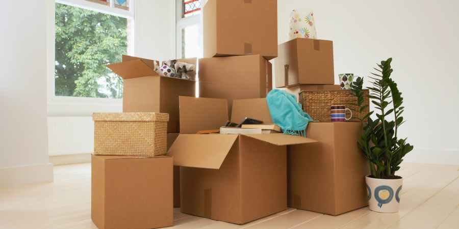 Top 10 Asshole Items To Pack When Moving