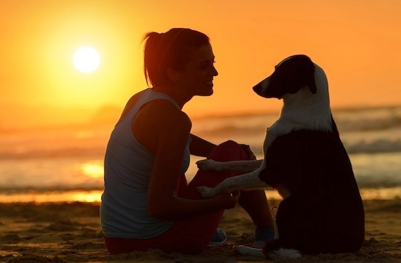 6 Things That Happen When You Hang Out With Your Dog More Than You Hang Out WithPeople