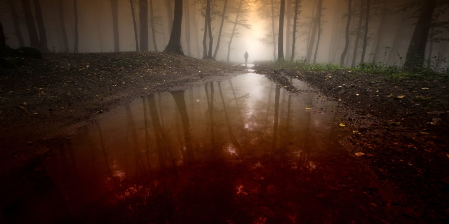 27 People Reveal Their Terrifying Real Life Creepy Stories
