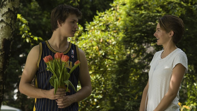 What The Fault In Our Stars Means To Someone Who Was Diagnosed WithCancer