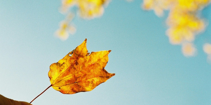 13 Signs You're So Ready For Fall To GetHere