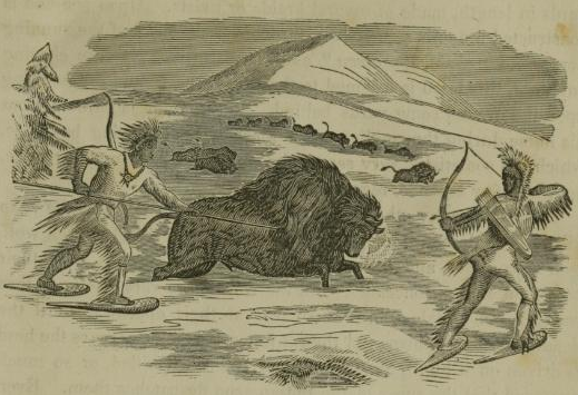 Long before people had the option to blind themselves to where their food comes from, an illustration of a buffalo hunt, 1855.  Wikimedia Commons