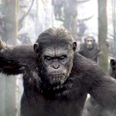 The Devastation of Utopia In Dawn Of The Planet Of The Apes