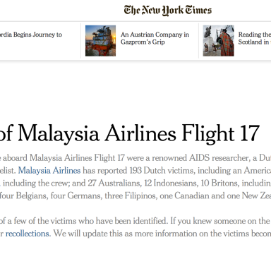 The Victims Of Malaysia Airlines Flight 17, As Profiled By The New York Times