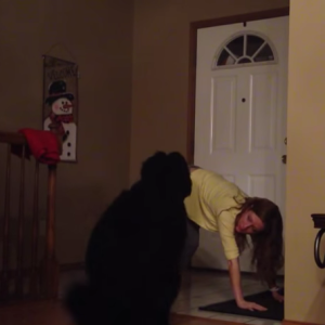 Family Dog Teaches Woman How To Yoga
