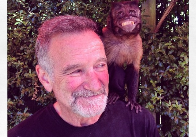 O Captain, My Captain: Thank You, Robin Williams