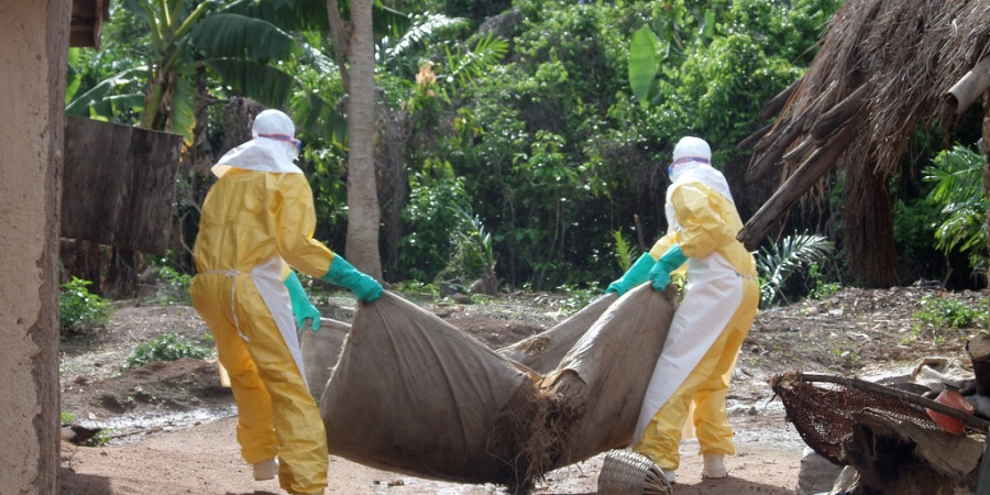 13 Facts About The Deadly Ebola Virus That You Didn'tKnow