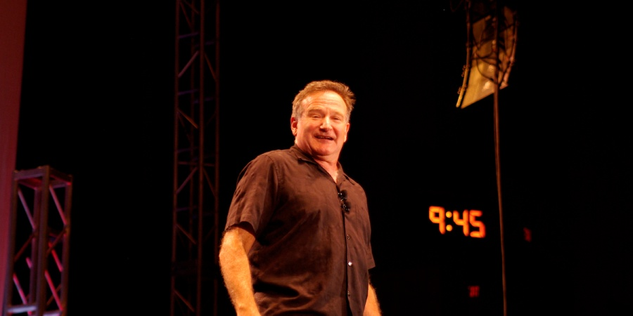 Robin Williams, Depression And The Burning Swamp