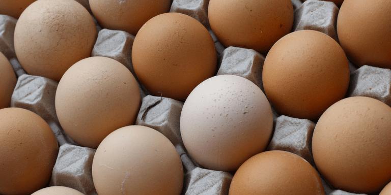 I Got My Eggs Frozen And I'm Not Sure If I RegretIt