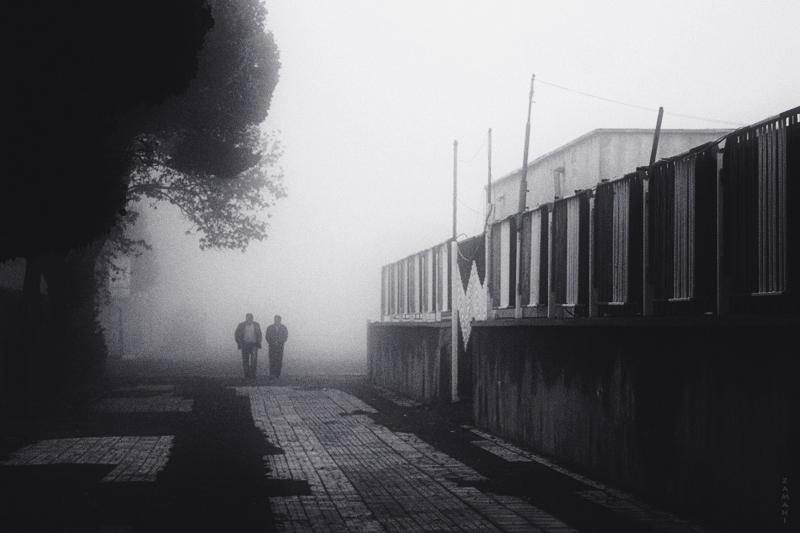image - Flickr / seyed mostafa zamani