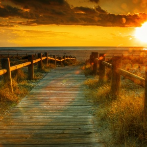 Goodbye, Summer: Don't Bother To Stay In Touch