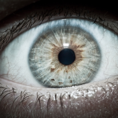 7 Terrifying True Tales Of The Paranormal