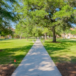 12 Emotional Responses To Being A College Senior