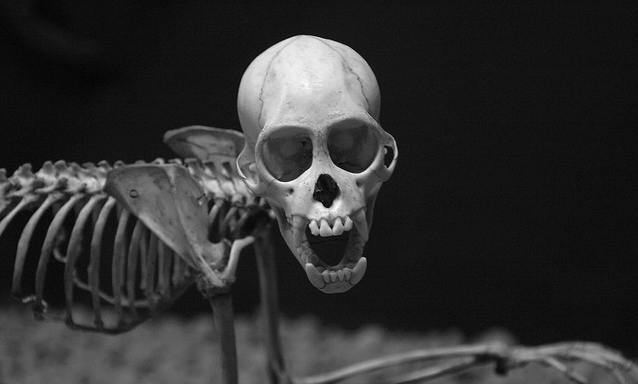 13 Creepy Stories That Will Make You Scared To SleepTonight