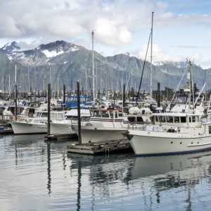 7 Lessons I Learned From Working At An Alaskan Fishery