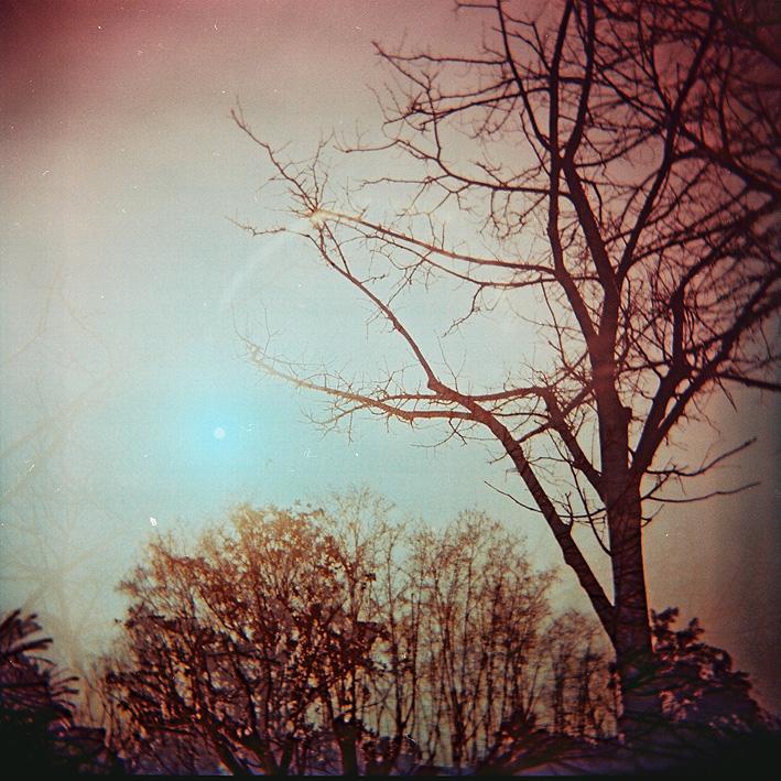image - Flickr / carolina naftali